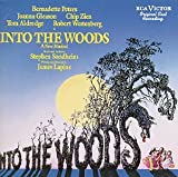 Into the Woods (1987 Original Broadway Cast)