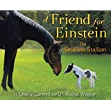 A Friend for Einstein, the Smallest Stallion