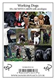 10 Working Dog Notecards with envelopes by Charles Sainsbury-Plaice.