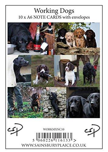 10-tarjetas-con-sobres-de-perro-de-trabajo-diseno-de-charles-sainsbury-plaice