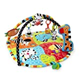 Bright Starts Start Your Senses Safari Activity Gym, Spots and Stripes (Discontinued by Manufacturer)