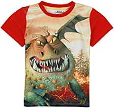 Kids How To Train Your Dragon Boy Short Sleeve 3 D Printing C5050Y