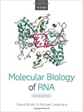 img - for Molecular Biology of RNA book / textbook / text book