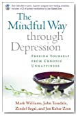 The Mindful Way Through Depression: Freeing Yourself from Chronic Unhappiness (Book &amp; CD)