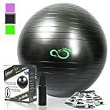 Exercise Ball -Professional Grade Anti Burst Tested with Hand Pump- Supports 2200lbs- Includes Workout Guide Access-65cm Balance Balls