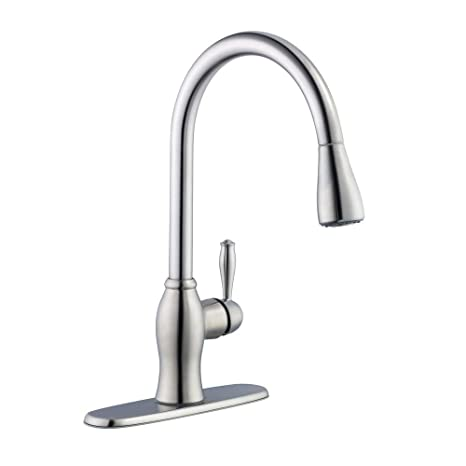 Pegasus 67403-1108D2 1050 Series Single-Handle Pull-Down Sprayer Kitchen Faucet in Stainless Steel