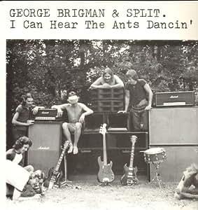 George Brigman Split Silent Bones
