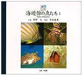 海遊館の魚たち〈1〉 (魚の絵本)
