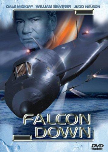 Falcon Down