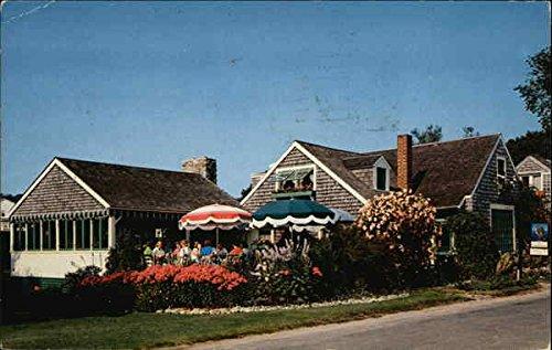 Whistling Oyster Tea Room And Gift Shop Ogunquit Maine Original Vintage Postcard