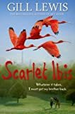 Scarlet Ibis