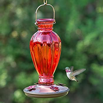 Perky Pet 8133-2 Daisy Vase Vintage Glass Hummingbird Feeder