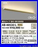 �R�C�Y�~ AB40530L