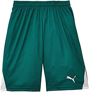 Puma Team Short Homme Team Green/White FR : 8 ans (Taille Fabricant : 128)