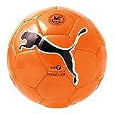 プーマ(PUMA) ビッグキャット ファン フットボールサラJ(フットサル) 081793 17 フローオレンジ/ブラック 3号