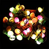 Alcoa Prime 3M 28 Leds Colorful Fruit Shape Led String Light 220V Multi Shape Color Fruit Lamps For Christmas...