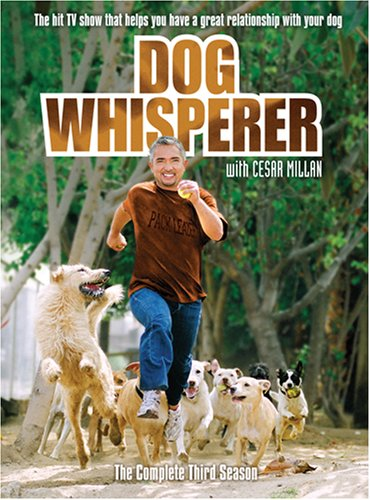 Dog Whisperer With Cesar Millan: Comp Third Season [DVD] [Region 1] [US Import] [NTSC]