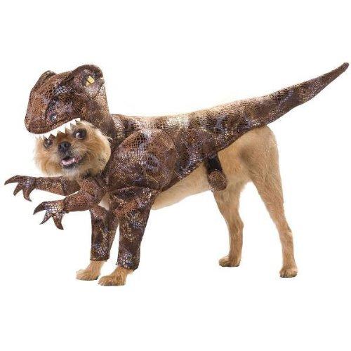 ハロウィーン なりきり 犬服 ハロウィン コスプレ 衣装 アニマルプラネット 恐竜ラプトル