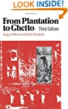 From Plantation to Ghetto (American Century)