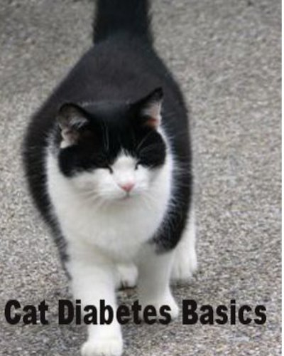Cat Diabetes Basics