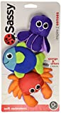 Sassy Soft Swimmers Infant Toy (Multicoloured)