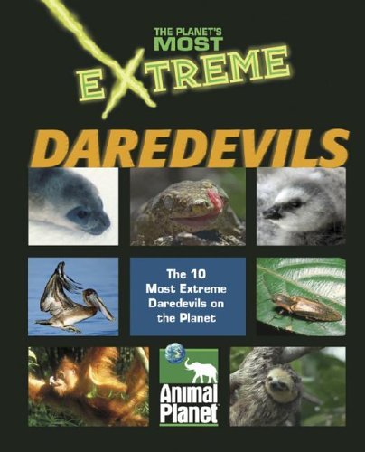 The Planet's Most Extreme - Daredevils