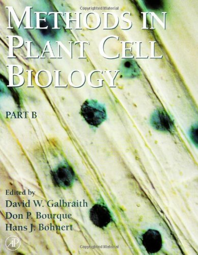 Methods In Plant Cell Biology, Part B, Volume 50 (Methods In Cell Biology)