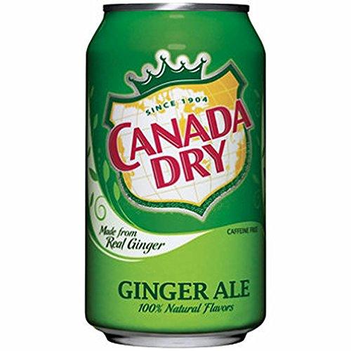 canada-dry-ginger-ale-330ml-soda-gusto-zenzero