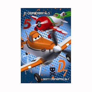 Disney Pixar Planes - Couverture Polaire 150x100cm (Import Royaume-Uni)