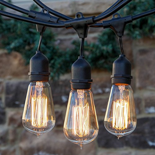 Brightech Ambience Pro Vintage Edition Outdoor Commercial String Lights with Nostalgic Edison ...