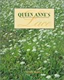Queen Anne's Lace (0807567108) by Wexler, Jerome
