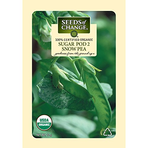 Seeds-of-Change-Certified-Organic-SnowPea