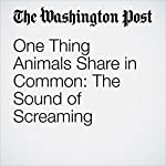One Thing Animals Share in Common: The Sound of Screaming | Ben Guarino