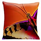 Lama Kasso 501 Large Butterfly on a Red Transitioning to Orange Background Square Satin Pillow, 18-Inch