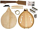 Saga AM-10 mandoline Kit