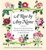 A Rose by Any Name (Hardback) - Common