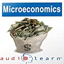 Microeconomics AudioLearn Follow-Along Manual: AudioLearn Economics Series Audiobook by  AudioLearn Editors Narrated by  AudioLearn Voice Over Team