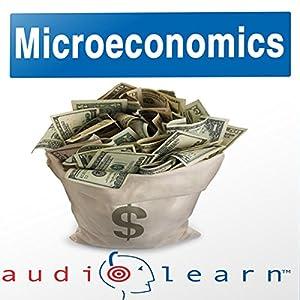 Microeconomics AudioLearn Follow-Along Manual Hörbuch