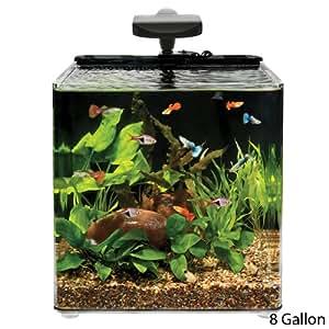 Aqueon aqe17102 evolve desk top aquariums for Amazon fish tank