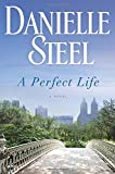 Image of A Perfect Life: A Novel