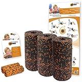 Blackroll Orange (Das Original) - DIE Selbstmassagerolle - Pilates-Set - inkl. Übungs-DVD und Übungsposter