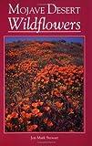 Mojave Desert Wildflowers