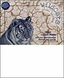 Tigers Combined Lesson Plans / Adventure Journals for New Tigers Add-on Pack (Wildcats) (0790127415) by Hanifin, Erin