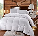 Royal Hotels 300 Thread Count King Size Goose Down Alternative Comforter 100% Egyptian Cotton 300 TC - 750FP - 86Oz - Solid White