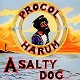 Salty Dog - Plus by Procol Harum