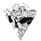 Color Me 26-inches Tyvek Diamond Kite: Spider-man