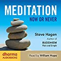 Meditation Now or Never Audiobook by Steve Hagen Narrated by William Hope