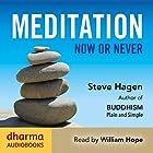 Meditation Now or Never Hörbuch von Steve Hagen Gesprochen von: William Hope