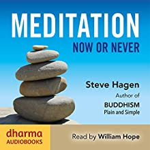 Meditation Now or Never | Livre audio Auteur(s) : Steve Hagen Narrateur(s) : William Hope