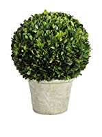 JLINE Planta Artificial Boj XL